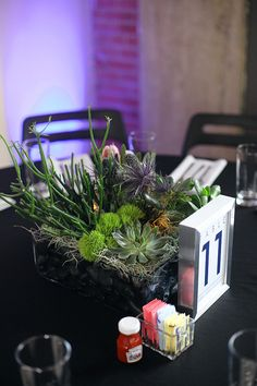 Gorgeous succulent centerpieces with table numbers!