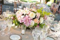 beaulieu garden elegance