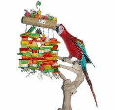 XL Macaw and Cockatoo Bird Toy