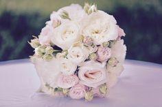 Leistungen und Preise Rose, Flowers, Plants, Photography, Fiction, Wedding Photography, Photo Illustration, Pink, Photograph