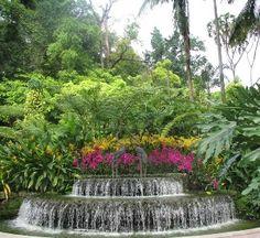 Explore Singapore's green gardens, parks and botanic gardens