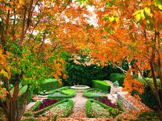 See? We have seasons in L.A.: An Isabelle Greene garden in Pacific Palisades