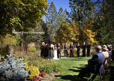 Weddings at the Tahoe Tree Company.