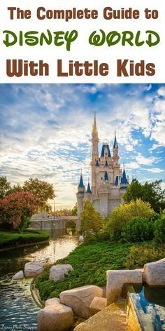 Disney World with Toddlers: Rides, Best Park, and Tips (October 2021)
