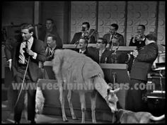 """Merv Griffin- """"The Surrey With The Fringe On Top"""" / Menagerie 1966 [Reelin' In The Years Archive] Merv Griffin Show, Surrey, Archive, Wrestling, Entertaining, Youtube, Lucha Libre"""
