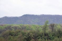 View of the mountain we hiked at Bays Mtn. from Stone Dr.