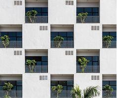 도시 자연의 몸집을 키우는 식물 디자인 : 네이버 매거진캐스트