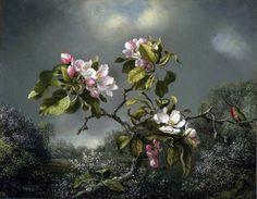 Martin Johnson Heade, Apple Blossoms & Hummingbird.
