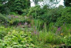 как создать природный сад
