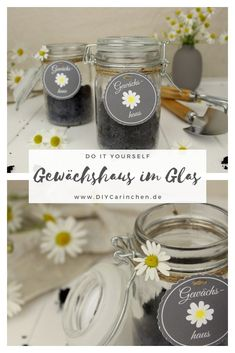 Do it yourself - Mini greenhouse in a glass - perfect gift idea for summer, Mint Sauce, First Fathers Day Gifts, Valentines Day Presents, Mini Greenhouse, Presents For Her, Like Chocolate, Fruit Drinks, Mom Day, Diy Desk