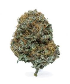 Buy online Weed Vape Pen and Cannabis Phoenix Tears Concentrates in Canada. We have the top brands and highest weed vape pen and cannabis at affordable price. Buy Weed, Vape, Cannabis, Pens, Delivery, Gardens, Website, Shop, Ganja