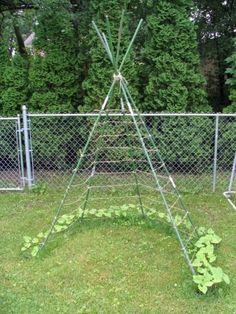 tuin die leuk is voor de kinderen - Tent van klimplanten