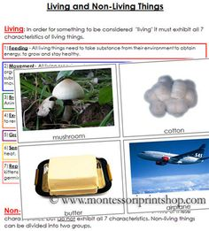 Living and Non-Living Things - Printable Montessori Science Materials for Montessori Learning at home and school.