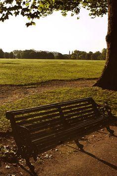 Sunlight streams across Regent's Park, #London 21°C | 70°F #BurberryWeather