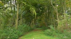 IVN: Ontdek het Zanddepot West-Friesland
