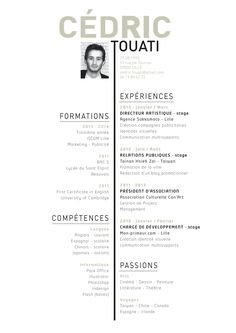 CV Cédric Touati, Art Director