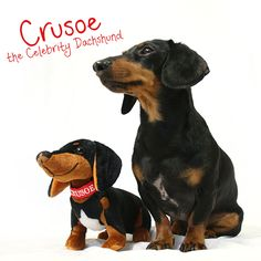Crusoe the Dachshund Stuffed Animal