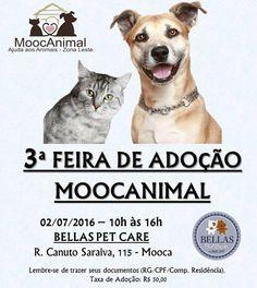 BONDE DA BARDOT: SP: Moocanimal realiza campanha de adoção neste sábado (02/07)