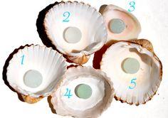 Your Choice of Sea Glass Codds Small by BeachBountySeaGlass