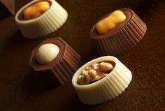 http://www.melodicikolata.com/PRESTIJ-MELODI-OZEL-BUYUK,PR-56.html #chocolate #melodicikolata #chocolates #special #chocoholic