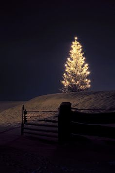 Winter night aglow #EFPerfectGift