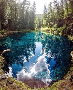 Tamolitch Pool, Oregon--Tamolitch (Blue) Pool Trail Via McKenzie River Trail is a 3.9 mile moderately trafficked out and back trail located near Cascadia, OR that features a river and is rated as moderate. The trail offers a number of activity options and is accessible year-round. Dogs are also able to use this trail but must be kept on leash.