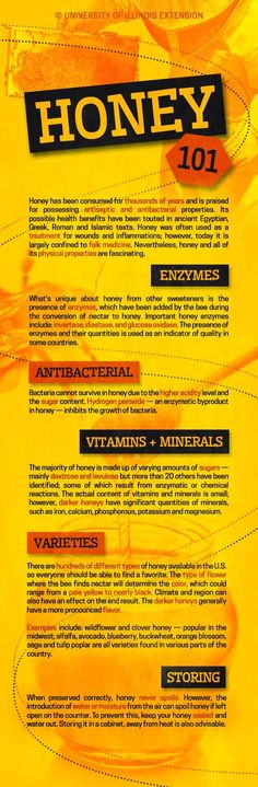 Honey 101 — if you aren't eating honey regularly, you should consider it! #nutrition