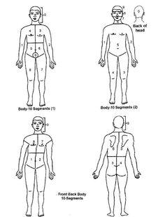 La acupresión Investigación, Capacitación y Tratamiento Sansthan