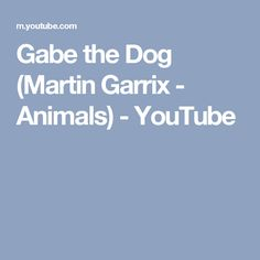 Gabe the Dog (Martin Garrix - Animals) - YouTube