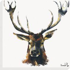 Red Deer Canvas Wrap by Sarah Pye - Decorative Art Centre