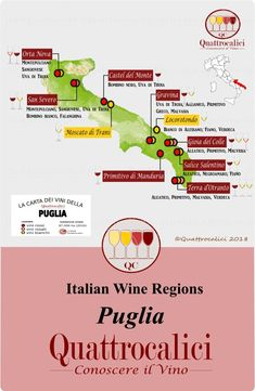 All about wines from Puglia (Italy) on Quattrocalici - the reference for Italian wines on the web
