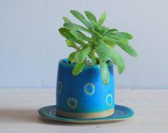 Planta de maceta suculenta olla pequeña olla por TreasureCraftsBox