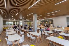 Browse our collection of education design photos. Cafeteria Design, Modern Classroom, High School Memories, 21st Century Classroom, Home Theater Rooms, Hall Design, Cafe Interior, School Design, Architecture Design