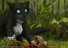 warrior cats spirit of alaska Warrior Cats Books, Warrior Cats Fan Art, Cat Drawing Tutorial, Cat Safe Plants, Serval Cats, Fox Dog, Love Warriors, Comic, Pretty Art