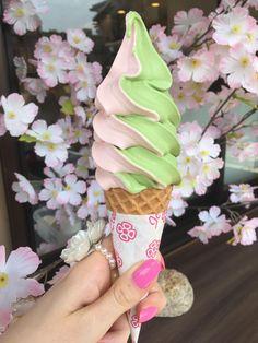 [OC] Cherry Blossoms and Macha Green Tea Soft-Serve Ice Cream in Kyoto Japan Green Tea greentea ice cream Green Ice Cream, Yummy Ice Cream, Matcha Ice Cream, Matcha Green Tea, Milkshake, Comida Picnic, Yogurt, Cream Aesthetic, Soft Serve