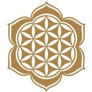 flower of life in brown like henna