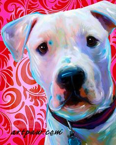 American Bulldog canvas print, Hot Pink and Red Valentines Print on Etsy, $24.99
