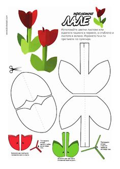 Spring tulips template
