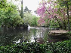 Lago en Parque EL Capricho. MADRID-ESPAÑA