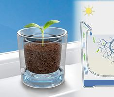 Water Recycling Flowerpot where water is stored in the inner wall which prevents overwatering yet keeps the plant hydrated. #flowerpot #gardening #YankoDesign