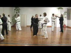 Goju Ryu Karate Advanced Bunkai/fighting 2 man drill