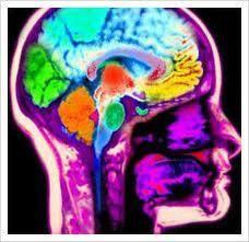the #neuroscience of #addiction