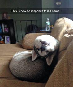 Call an exorcist. (via anewhigh)