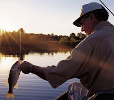 Learn about Delaware fish species.
