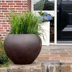 Venkovní květináč D-lite vajíčko Rusty Iron Concrete 40x32cm - Květináče.cz D Lite, Concrete, Planter Pots, Iron, Steel
