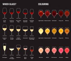 Wine glass guide