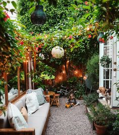 How I Turned My Tiny Backyard Into an Outdoor Oasis Tiny Canal Cottage's Whitney Leigh Morris shares her small patio ideas. Small Backyard Design, Backyard Patio Designs, Small Backyard Landscaping, Oasis Backyard, Back Yard Oasis, Landscaping Ideas, Patio Oasis Ideas, Narrow Backyard Ideas, Backyard Shade
