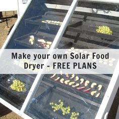 Make Your Own Solar Food Dryer – FREE PLANS | Off Grid World