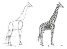 Dieren tekenen - Potloodtekening van een giraffe