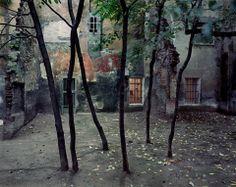 Courtyard, Bologna